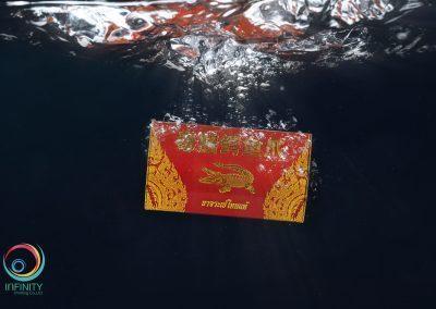 กล่องบรรจุภัณฑ์ ขาจระเข้ไทยแท้