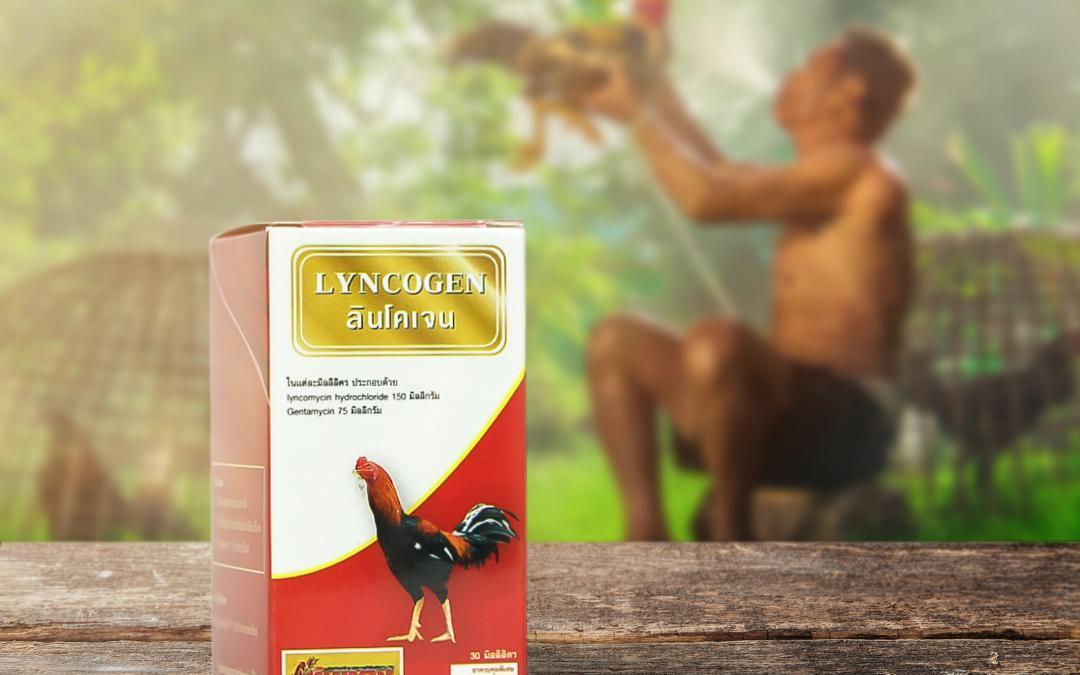 กล่องบรรจุภัณฑ์ LYNCOGEN